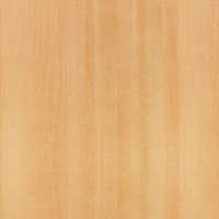 600mm Round Light Beech Werzalit Table Top