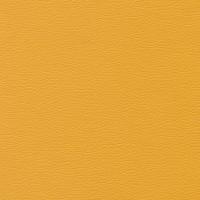 Aries Mustard