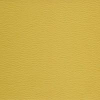 Aries Yellow