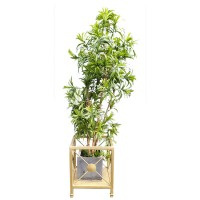 Gold Painted Metal Planter