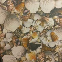 800mm x 800mm Sea Shell Werzalit Square Table Top
